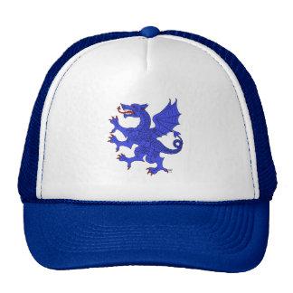 Gorra (azul) desenfrenado del dragón