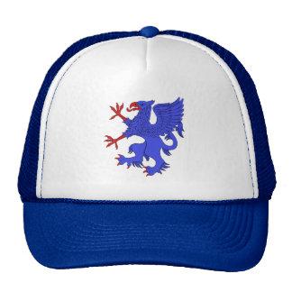 Gorra azul desenfrenado del grifo