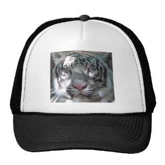 Gorra blanco del camionero del tigre