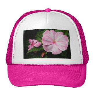 Gorra blanco rosado de Impatiens