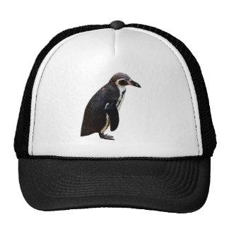 Gorra blanco y negro lindo del pingüino de