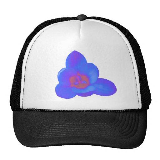 Gorra caliente y frío de la flor del azafrán