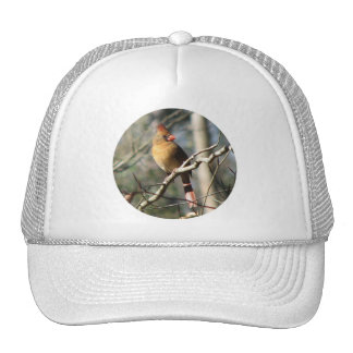 Gorra cardinal femenino
