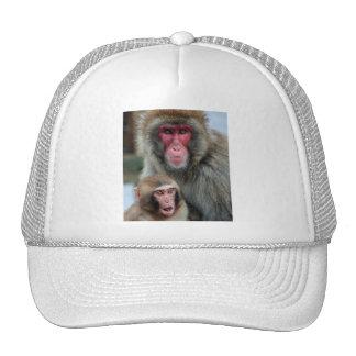 Gorra/casquillo japoneses de los monos de Macaque Gorro De Camionero