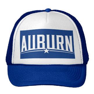Gorra castaño del camionero