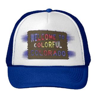 Gorra colorido del azul de la bandera del estado d