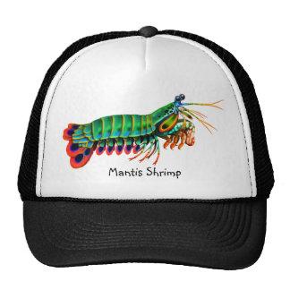 Gorra colorido del camarón de predicador del pavo