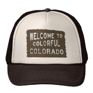 Gorra colorido del marrón del signo positivo de Co