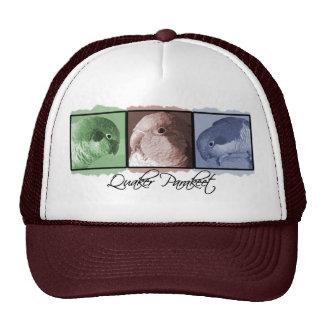 Gorra colorido del Parakeet del Quaker