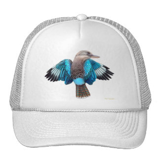 Gorra con alas azul de la malla de Kookaburra