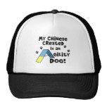 Gorra con cresta chino del perro de la agilidad