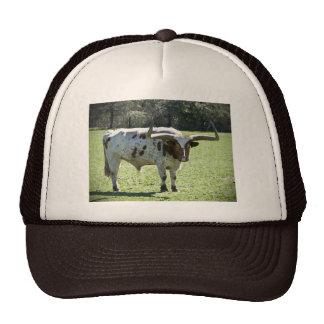 Gorra con imagen larga de la vaca del cuerno