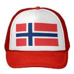 Gorra con la bandera de Noruega