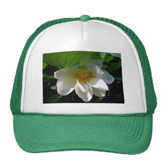 Gorra con la flor de Lotus blanco delicada