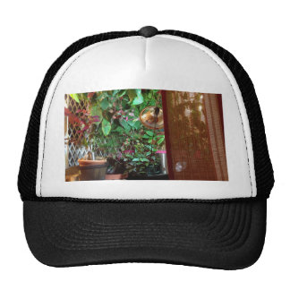 Gorra con la foto interior de la naturaleza