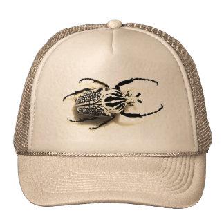 Gorra con la imagen del escarabajo