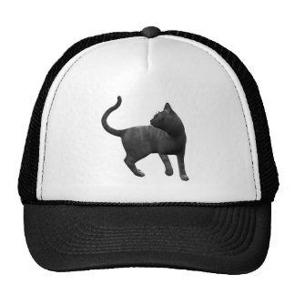 Gorra dañoso del gato negro