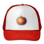 Gorra de Apple por el rafi talby