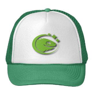 Gorra de AstroGarrobo