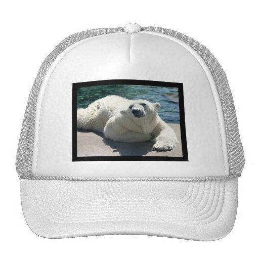 Gorra de béisbol ártico del oso polar