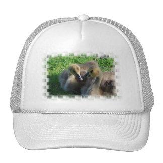 Gorra de béisbol canadiense de los ansarones de lo