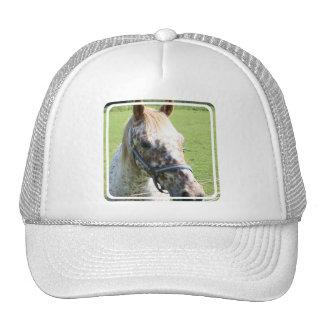 Gorra de béisbol Dappled del caballo del Appaloosa