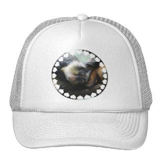 Gorra de béisbol de Guenon del lobo