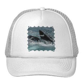 Gorra de béisbol de la ballena jorobada