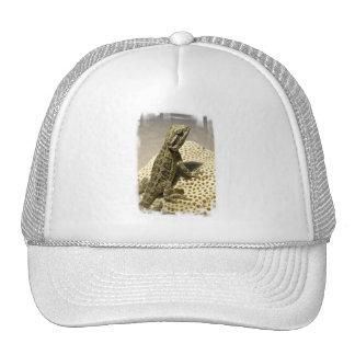Gorra de béisbol de la especie del lagarto
