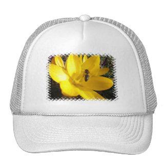 Gorra de béisbol de la flor del azafrán
