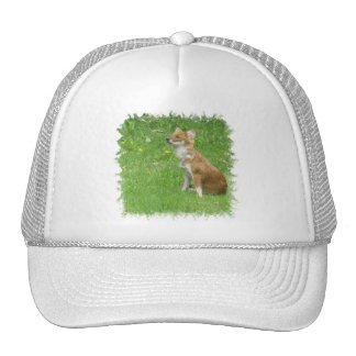 Gorra de béisbol de la foto del Fox
