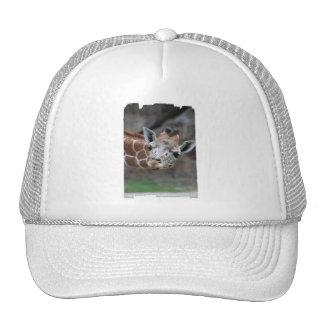 Gorra de béisbol de la jirafa