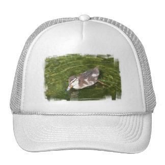 Gorra de béisbol de la natación del pato del bebé