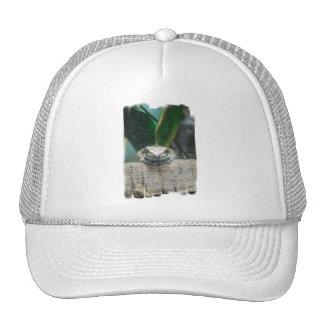 Gorra de béisbol de la rana de la leche del Amazon