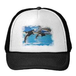 Gorra de béisbol de las ballenas de la orca