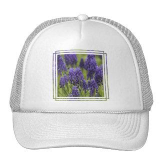 Gorra de béisbol de los bulbos del jacinto de uva