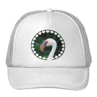 Gorra de béisbol de los flamencos del amor