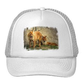Gorra de béisbol de los zorros