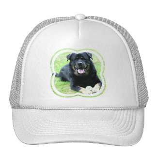 Gorra de béisbol de Rottie