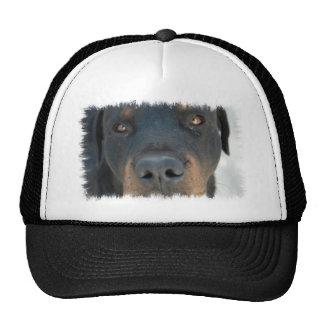 Gorra de béisbol de Rottweiler