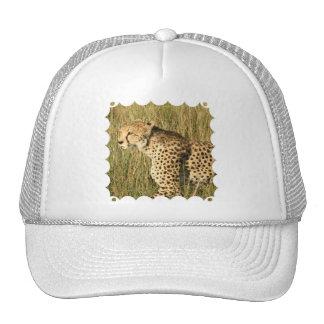 Gorra de béisbol de vagabundeo del guepardo
