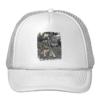 Gorra de béisbol de vagabundeo del lobo