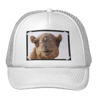 Gorra de béisbol del camello