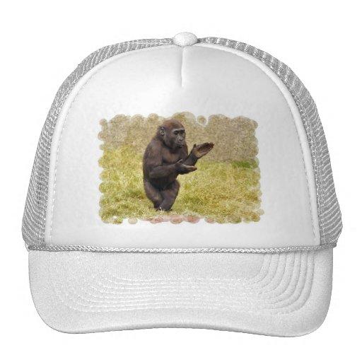 Gorra de béisbol del chimpancé