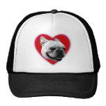 Gorra de béisbol del dogo francés del amor