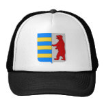 Gorra de béisbol del escudo de Carpatho Rusyn