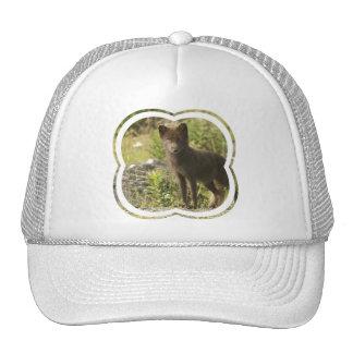 Gorra de béisbol del Fox negro