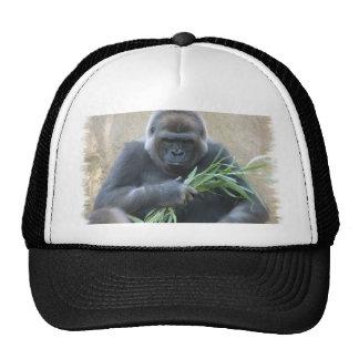 Gorra de béisbol del gorila del Silverback