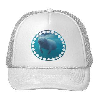Gorra de béisbol del Manatee