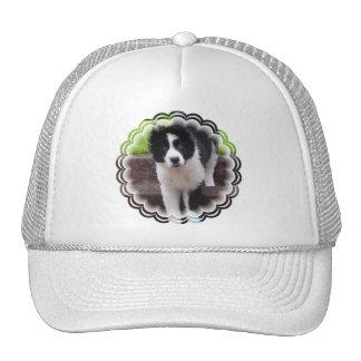 Gorra de béisbol del perrito del border collie